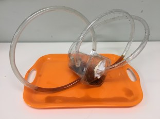 A model of the inner ear's semicurcular canals using plastic tubing, tupperware, and balsamic vinegar.