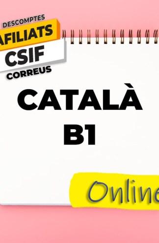 Català B1