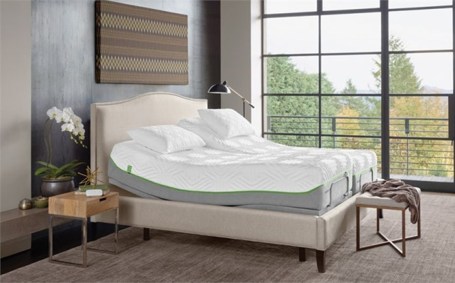 Tempur Flex Collection Mattresses