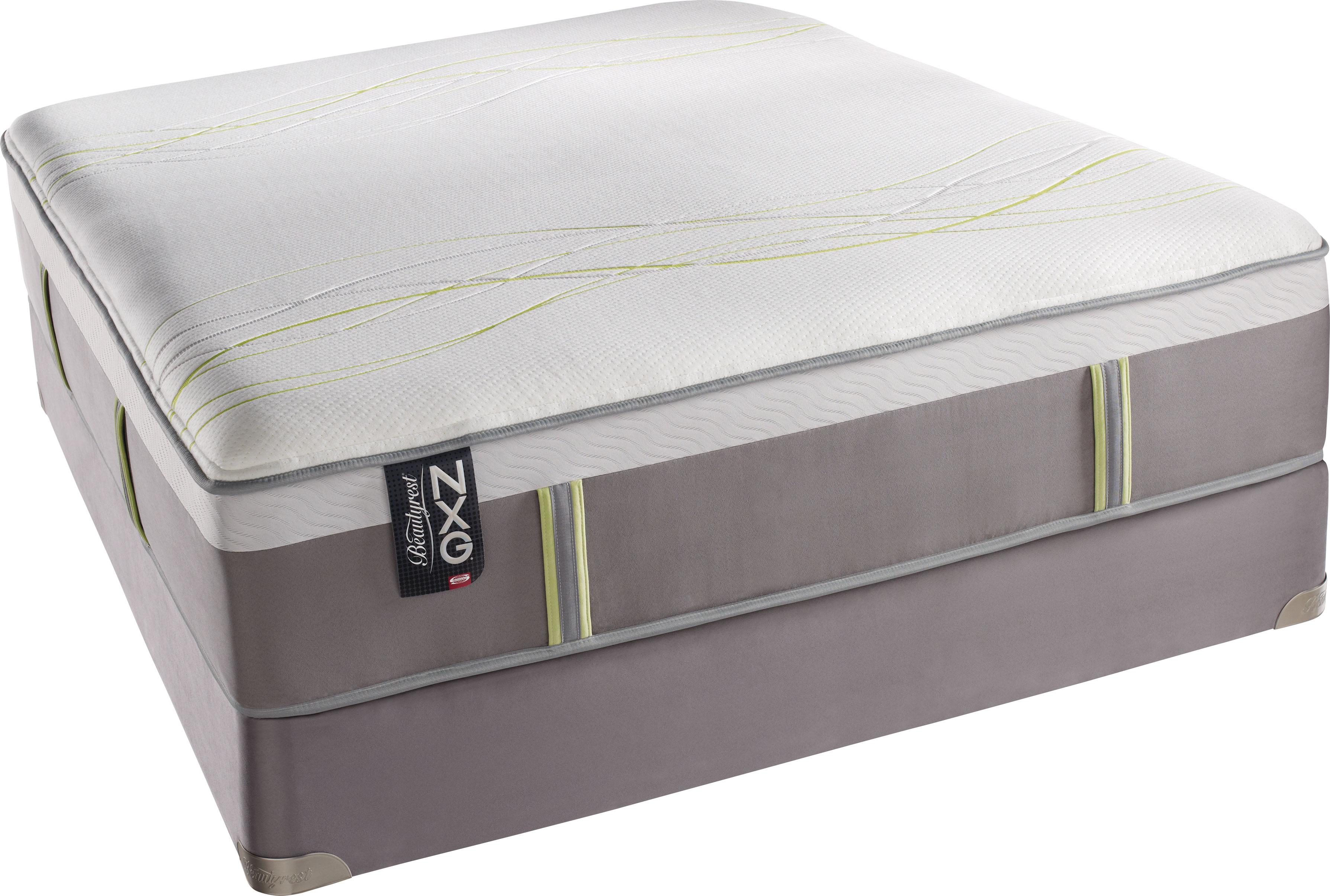 simmons beautyrest nxg 400 plush pillow