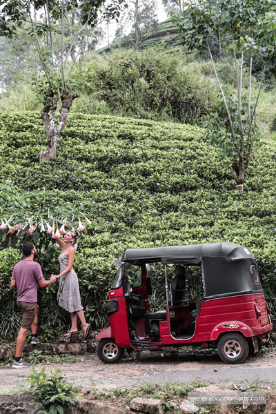 Exploring tea plantations with our Tuktuk
