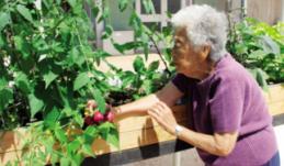 Generations - 2014-12-01 - Maui Mindset - Image 13