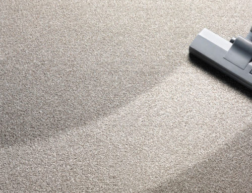 Why Do Carpet Stains Come Back - Generations Carpet Cleaning