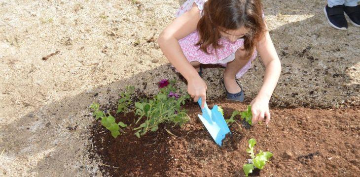 Fête du jardinier 2017 – Thiais – 40ème anniversaire