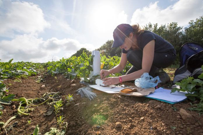 Dr Jessica Knapp is an ecologist