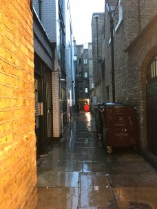 Alley in the area he attacked