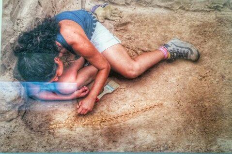 Un'archeologa sta scavando lo scheletro di un tonno a Baelo Claudia (foto: museo archeologico di Baelo Claudia)