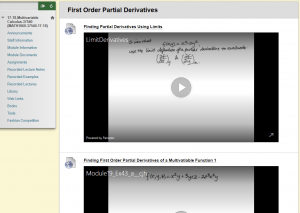 Screenshot of worked examples from Multivariable Calculus Blackboard site