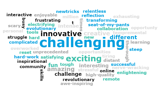 Vevox word cloud including: challenging, innovative, exciting, amazing, revolutionary, enlightening, different, seat-of-my-pants, commuinity, inspirational, hard work, struggle, complicated, electrifying, interactive, frustrating, enjoyable, unprecedented, overworked, intense, creative, nerve-wracking, fun, tough, tiring, satsifying, scary, busy, new tricks