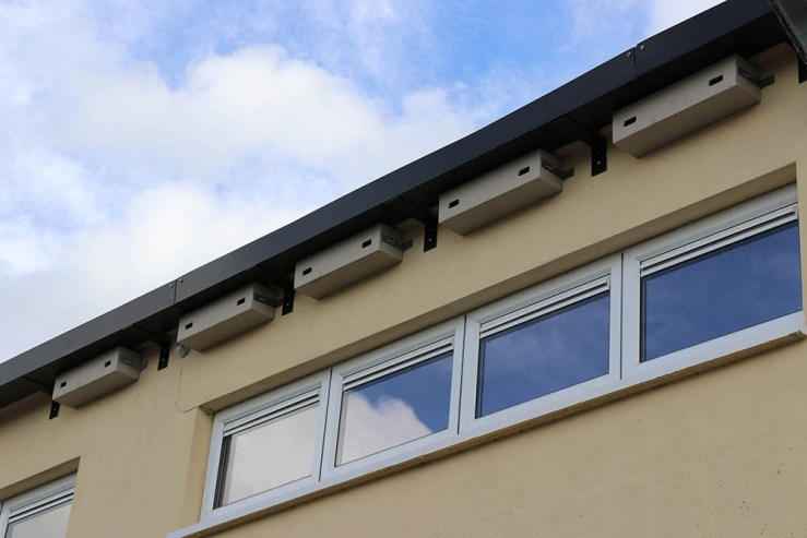Genesis Nest Boxes and Sound Systems - Installed nest boxes at the Patrician Boys' Secondary School in Newbridge Kildare
