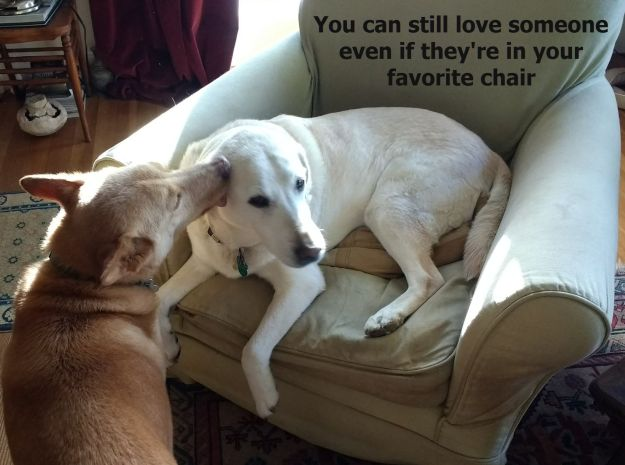 favorite-chair
