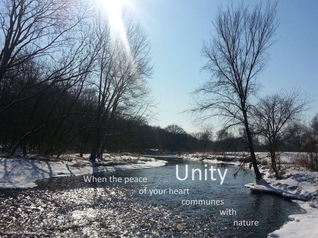 Unity C