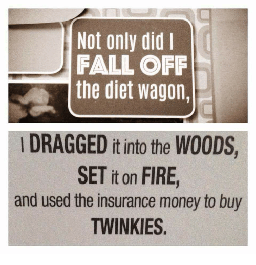 not-only-did-i-fall-off-the-diet-wagon-dragged-19642228