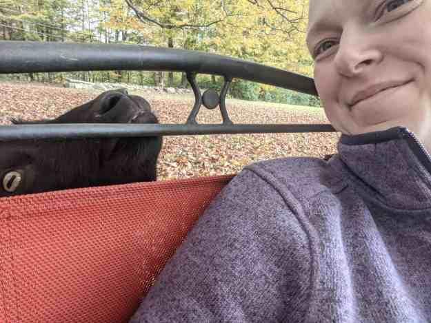 Annual Fall Farm Fun 1