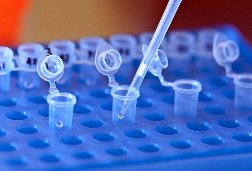 Role of alcohol in DNA extraction