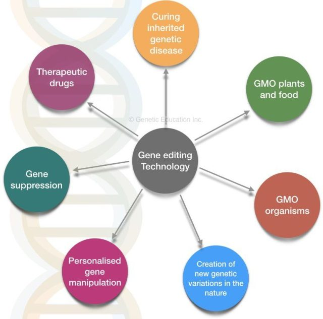 What is gene editing and CRISPR-CAS9?