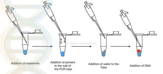 10 tips on how to do PCR