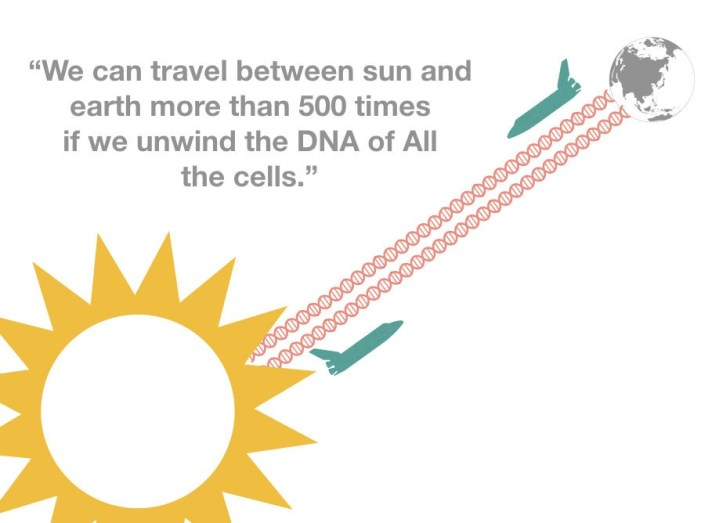 DNA fact: we can travel between sun and earth 500 times and more