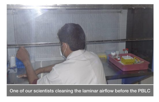 The cleaning procedure for the Peripheral Blood Leukocyte Culture