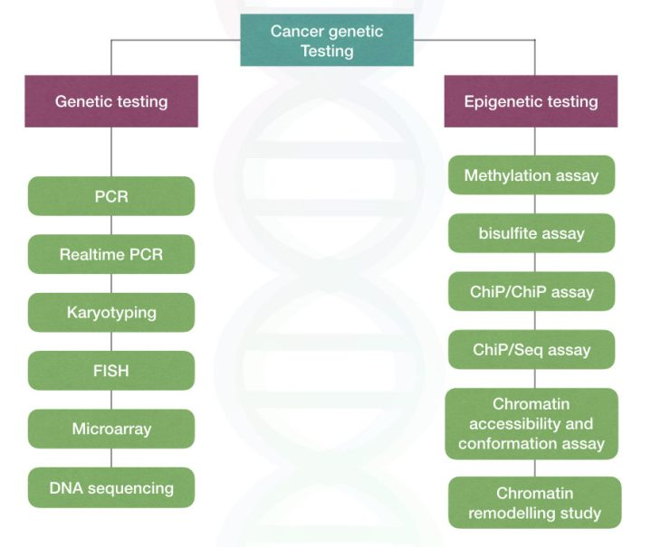 Cancer genetic testing techniques