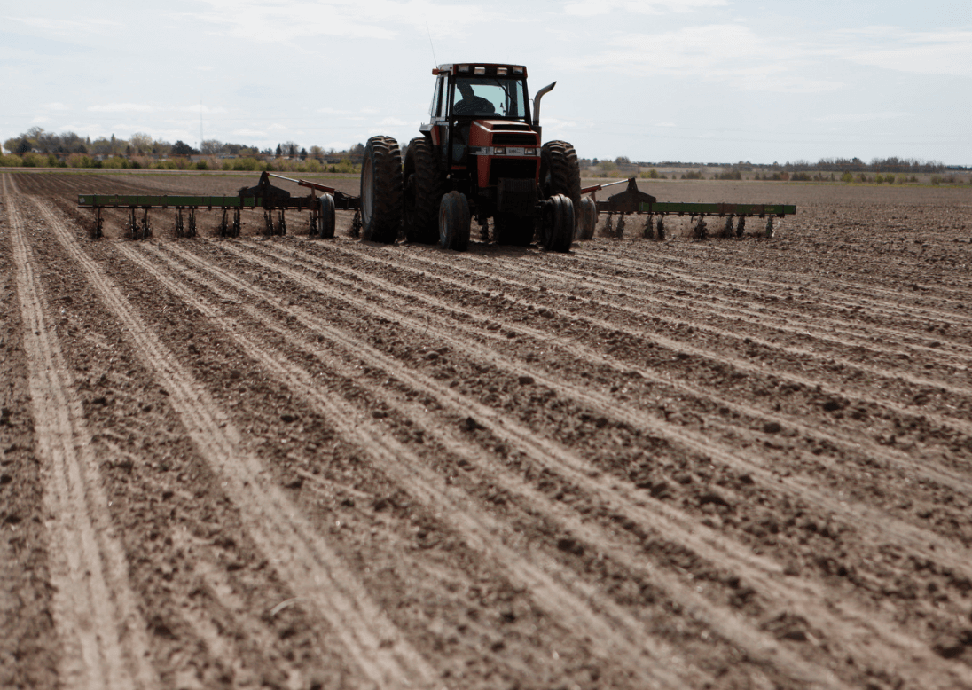 No Till Agriculture Offers Vast Sustainability Benefits