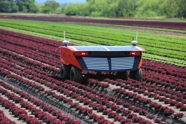 'Farmbots': Precision farming with agricultural robots ...