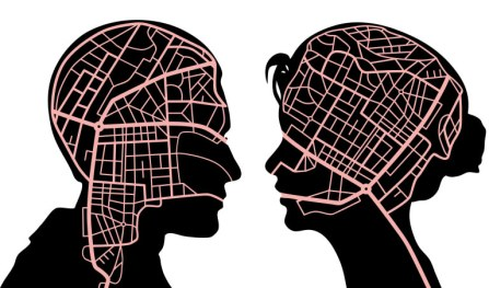 Viewpoint: Neuroscientists cannot afford to ignore differences ...