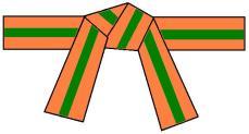 ceinture-orange-verte