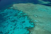 Great Barrier Reef 7