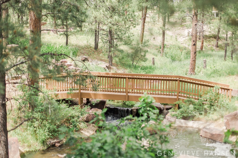 Steph Marcs Lodge At Cathedral Pines Wedding Black