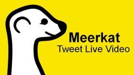 meerkat-app-tweet-live-video-twitter