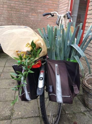 Op de fiets naar de markt