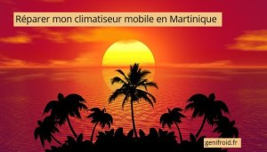 réparer mon climatiseur mobile en Martinique