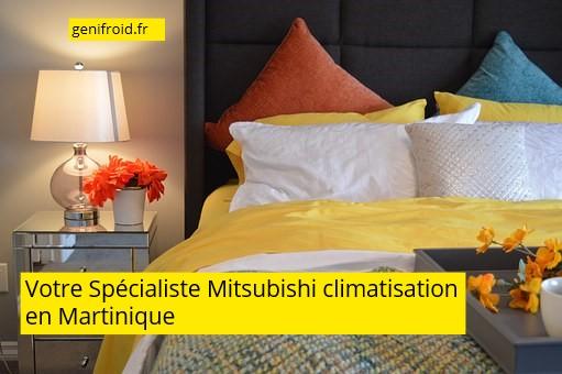 spécialiste Mitsubishi climatisation en Martinique