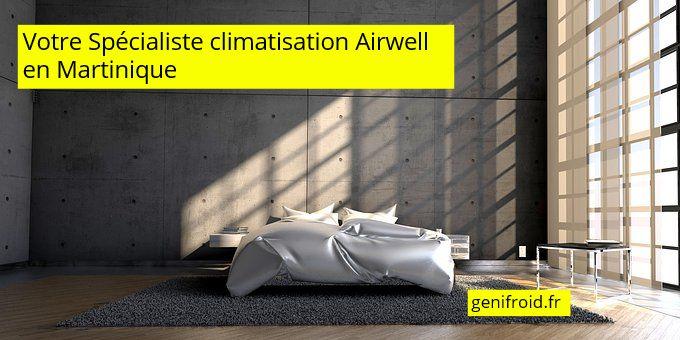 spécliaste climatisation Ariwell en Martinique