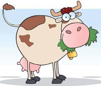 Vegan in Festa - mucca