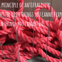 How I Make My Business #Antifragile