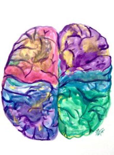 asimetría cerebral