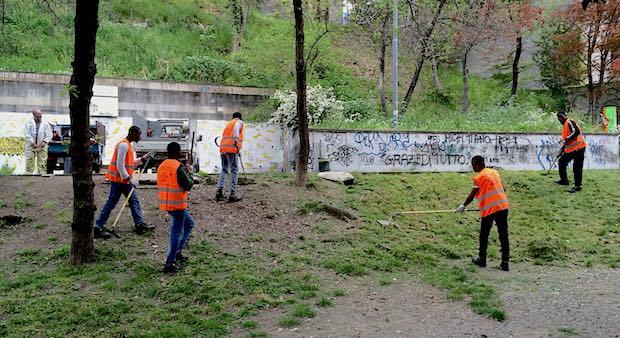 migranti, lavoro, giardini di plastica