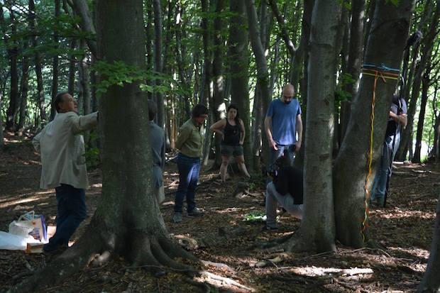 bosco-cimitero