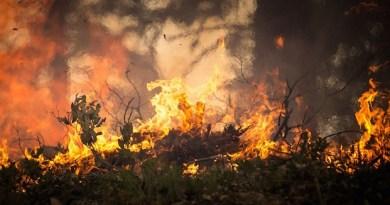Incendi boschivi, da domani scatta lo stato di grave pericolosità