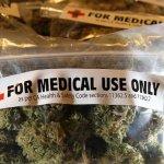 Penuria di forniture di cannabis terapeutica per uso medico, Pastorino all'attacco
