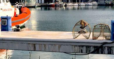 Guardia Costiera, pescatori e Wwf puliscono il mare dagli attrezzi abbandonati