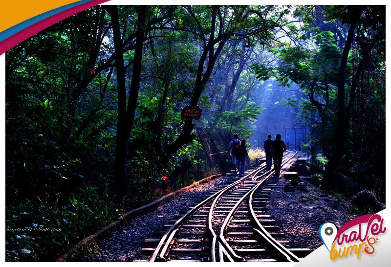 Sanjay-Gandhi-National-Park-Mumbai