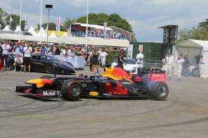 - Goodwood Festival of Speed 2019_10