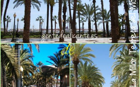 Alicante-Explanada-collage