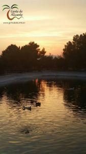 Universidad-Alicante-gentedealicante.es