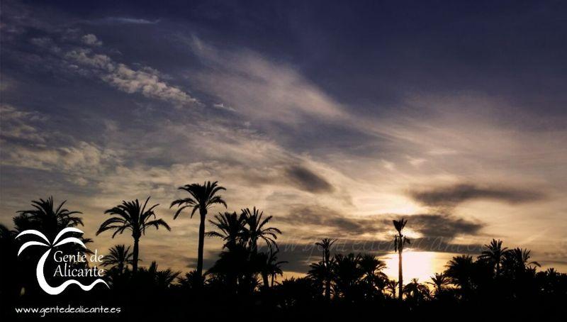 Atardecer-palmeras-elche-gentedealicante.es