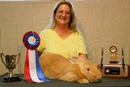 Award-winning Fawn