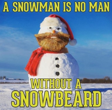 a-snowman-is-no-man-without-a-beard-memes